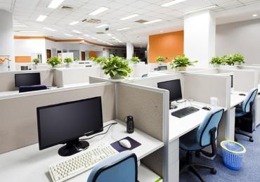 Seberapa Penting SEO dalam Bisnis Digital?